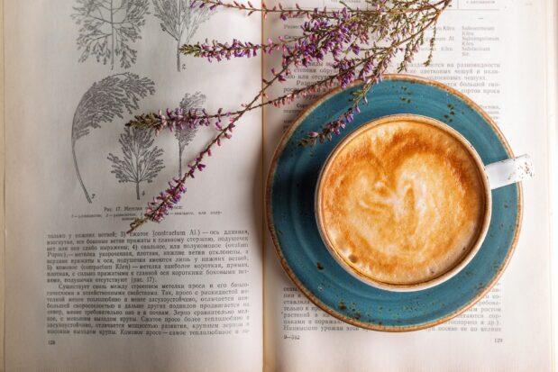 Gute Kaffeebohnen im Internet finden